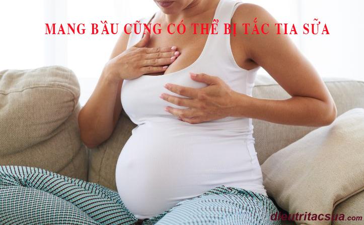 Thời kỳ mang bầu cũng có thể bị tắc tia sữa